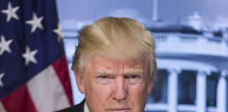 President Donald J. Trump