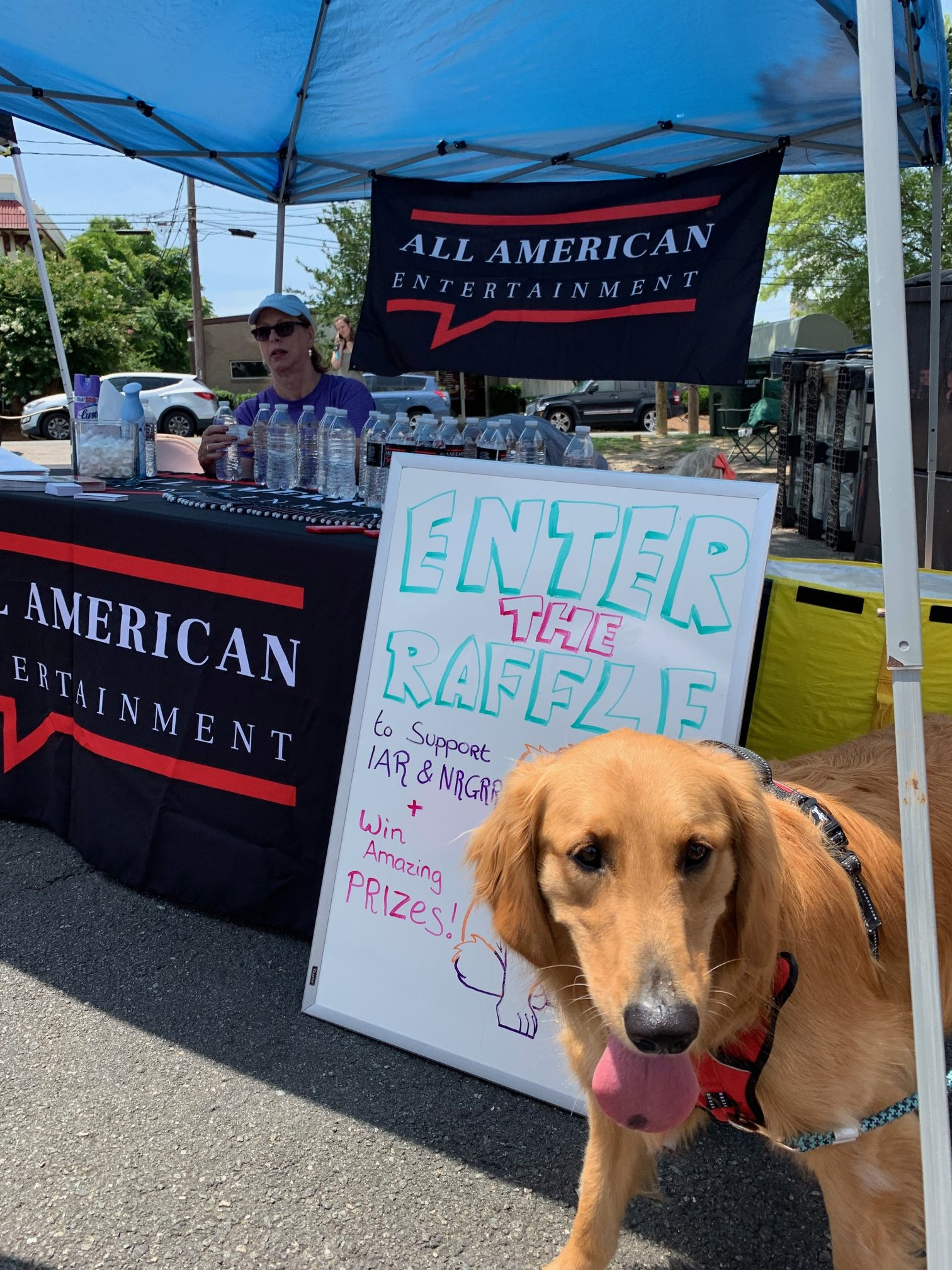 Golden Retriever at Pet Adoption Event Organized by AAE CARES