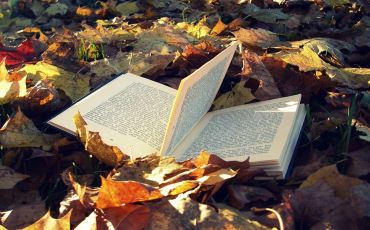 Fall is the Perfect Time for Reading