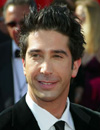 Booking Info for David Schwimmer