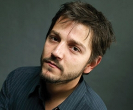 Booking Info for Diego Luna